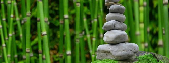 Zazen und Meditation
