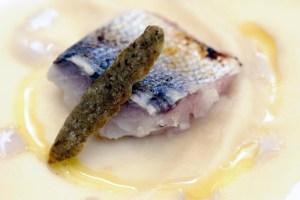 Slow Fish_Ivano Ricchebono_Fagiolo di Pigna, lampuga e capperi-X2