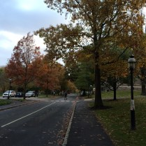 Princeton21