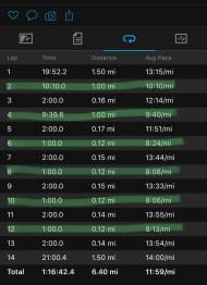 Illinois Marathon-109