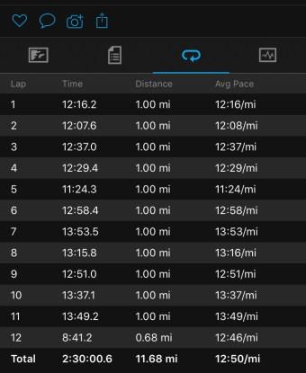 Illinois Marathon-170