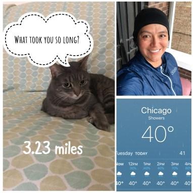 Illinois Marathon-174