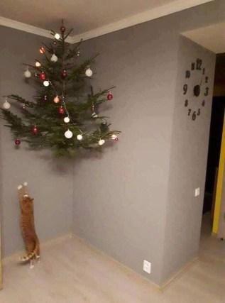 Cat and Christmas tree.jpg