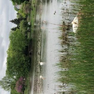 Lake Katherine-10