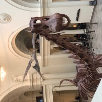 The Field Museum-3