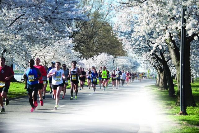 Cherry Blossom 10 Miler.jpg