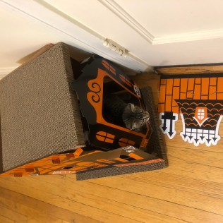 Cat House-2