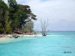 Playa en Isla Sipadan