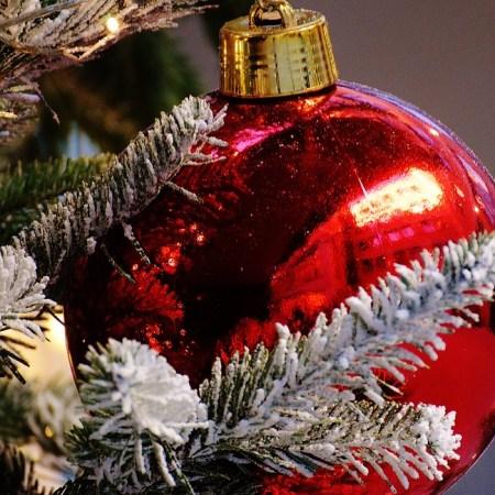 ispod božićnog drvca