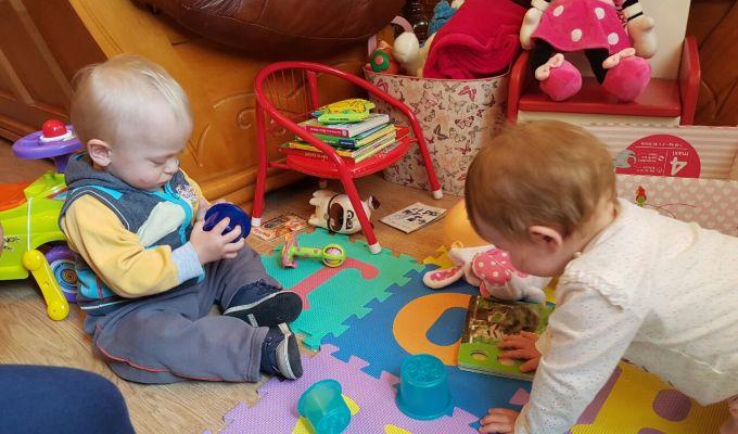Minimalizam ili svrhovit zivot: uvedite red u igračke, Dom i vrt, Organizacija