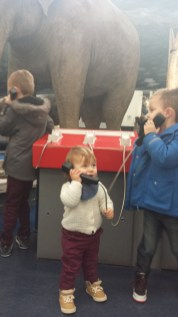 London with toddlers :NHM, South Ken