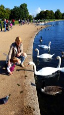 London with toddlers : Hyde Park birds