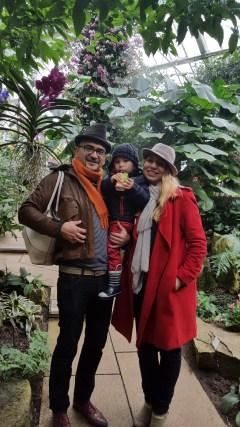 Visit Kew Gardens Orchid festival