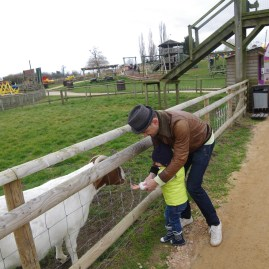 Best day trips from London Willows Activity Farm