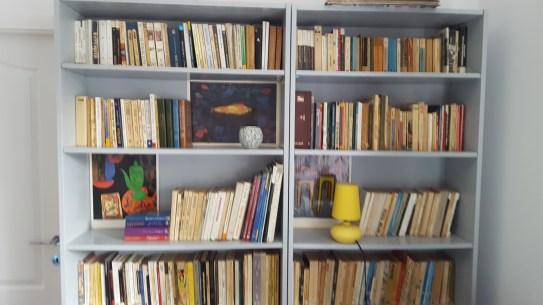 Childhood dreams: my books
