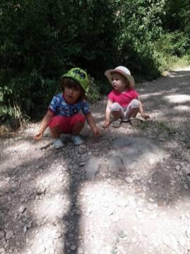 Brasov with kids: view from Postavaru
