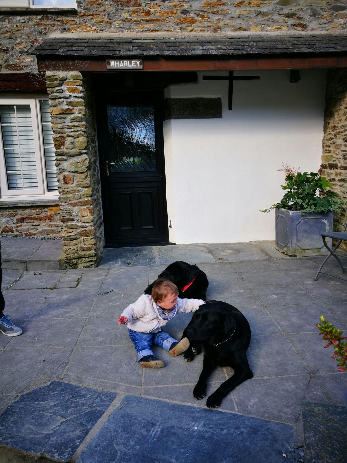 Cornwall with kids: Kilminorth Cotages