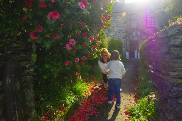 Best places in Cornwall: Kilminorth Cotages
