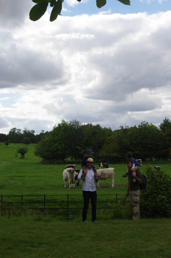Wimpole Estate with kids: the farm land