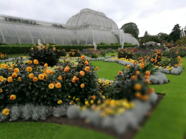 Visit Kew Gardens with baby