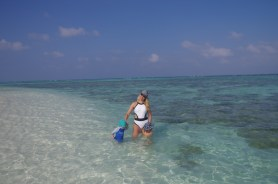 Best islands in Maldives for snorkeling