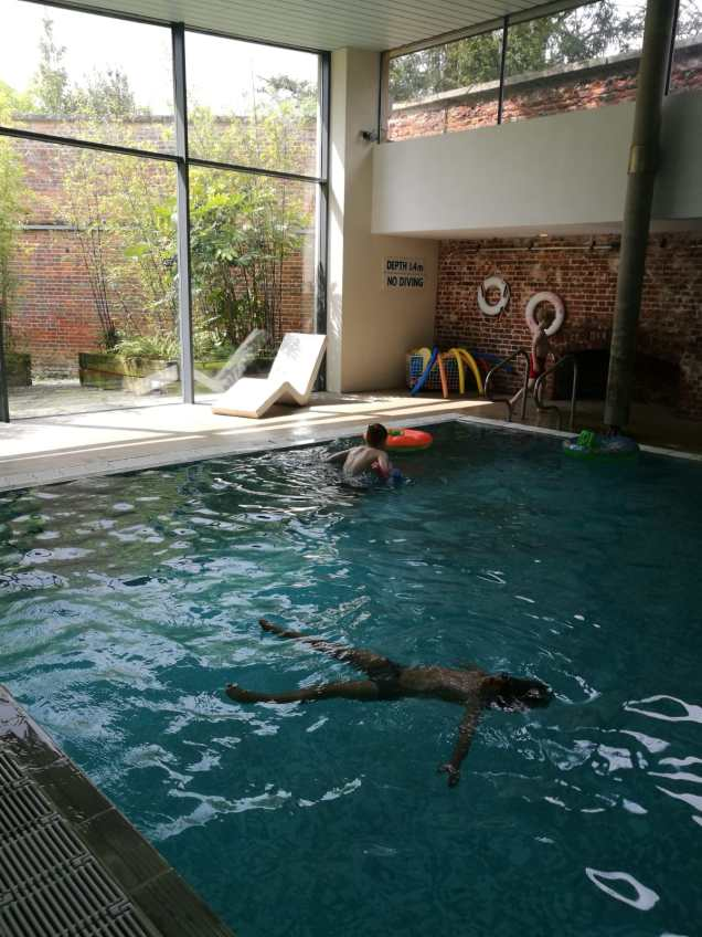 The pool - Boutique hotel Suffolk: Ickworth with kids