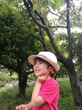 Monaci delle Terre Nere cherries