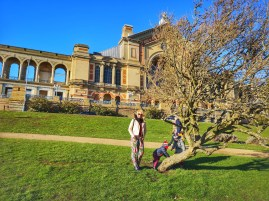Alexandra palace parkland