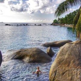 Best places to see turtles - Seychelles