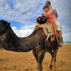 Adventure Essaouira with kids : camel riding