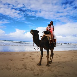 Adventure Essaouira with kids : dromadery riding