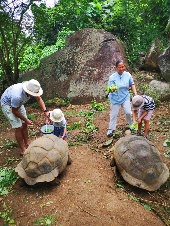 Wildlife & conservation Anse Intendance Mahe - Seychelles or Maldives with kids
