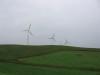 Windmills4_2