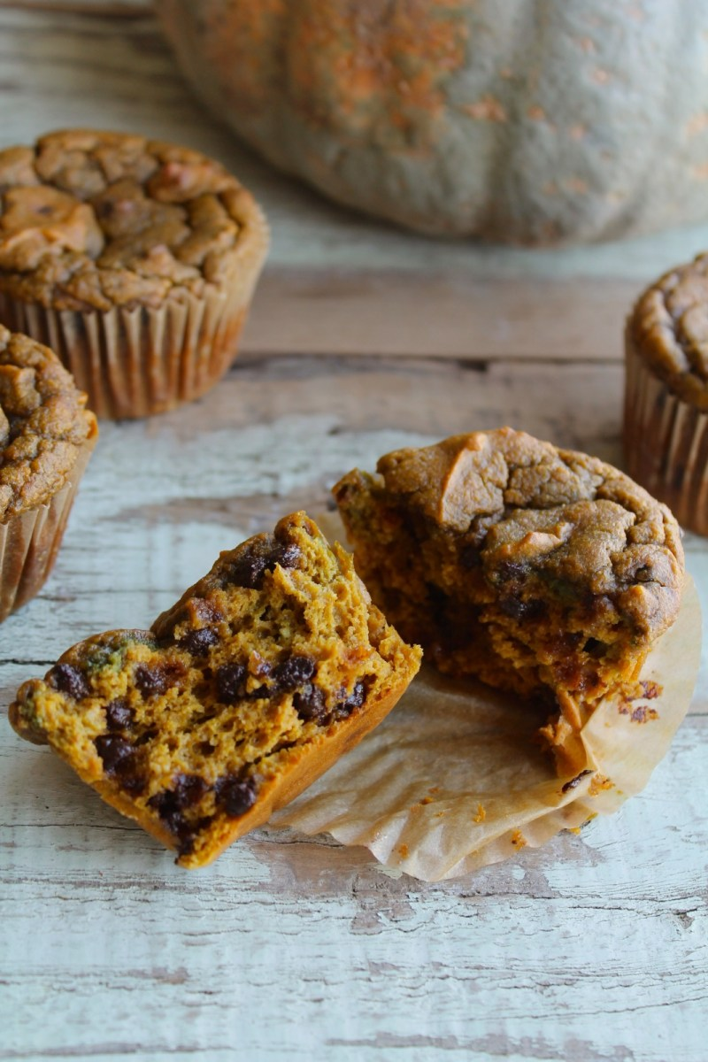 pumpkin chocolate chip muffins (or bread) - nut-free