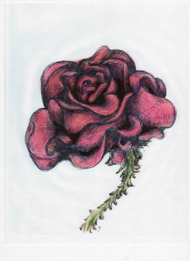 milesius rose