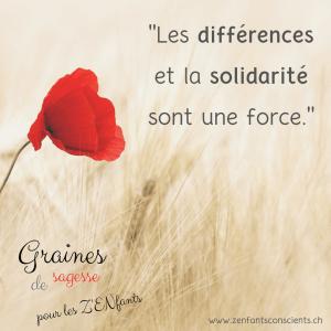 Quand la solidarité enrichit les différences