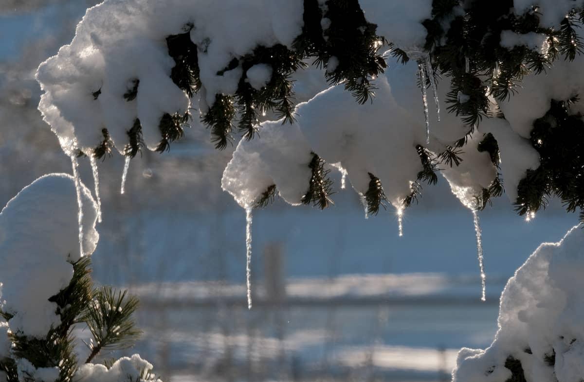 Winter economy