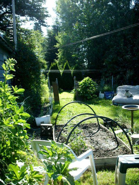 The gardens (2/2)