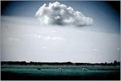 foto da Flickr di mindfulness
