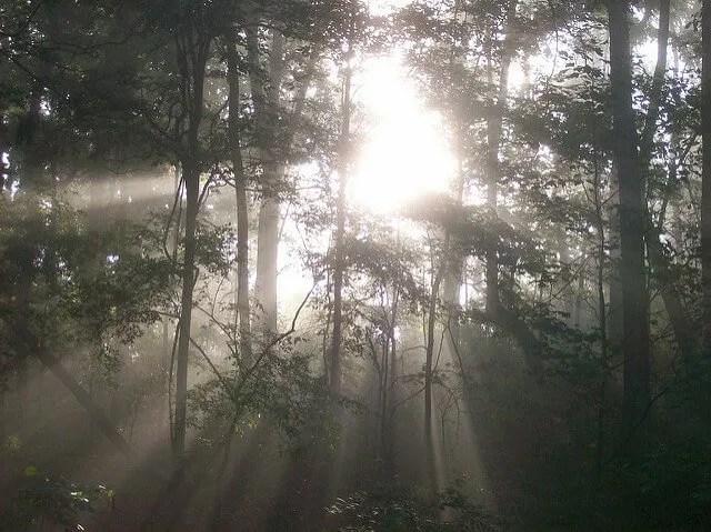 Jon Kabat-Zinn – Panorami d'aria