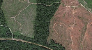 They sometimes leave a small line to fool the public. Imagery ©2014 DigitalGlobe, Landstat, State of Oregon, USDA Farm Service Agency. Map Data ©2014 Google