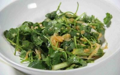 Recipe: Cilantro Kimchi