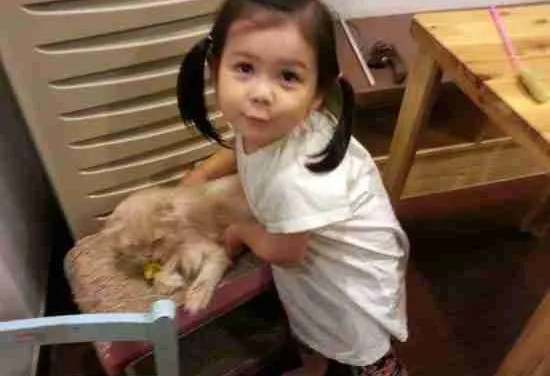 Jian at the Cat Cafe