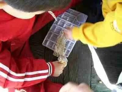 Kids Love Squid