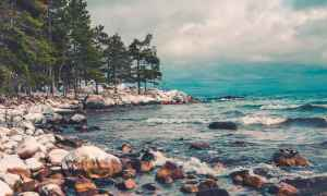 Michigan Shoreline