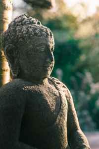 Buddha 404 page