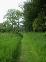 path1