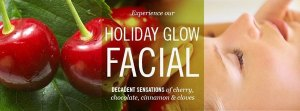 Holiday Glow Anti-Aging Facial Service 60 minutes at Zen Skincare Studio in Asheville, NC
