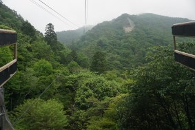 We slowly ascend up Mt Rokko in the gondola