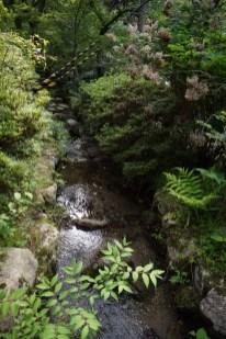 Downstream of Tsuzumigataki waterfall
